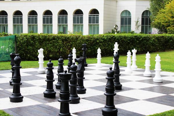 Lifesize-Chess-Board
