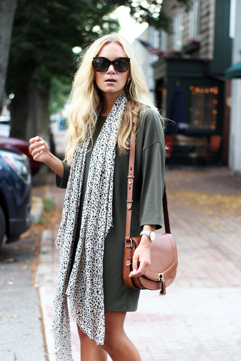 Dolman-Sleeve-Dress-Leopard-Print-Scarf-Nordstrom