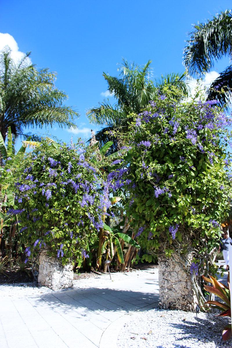 Naples-Florida-Botanical-Gardens