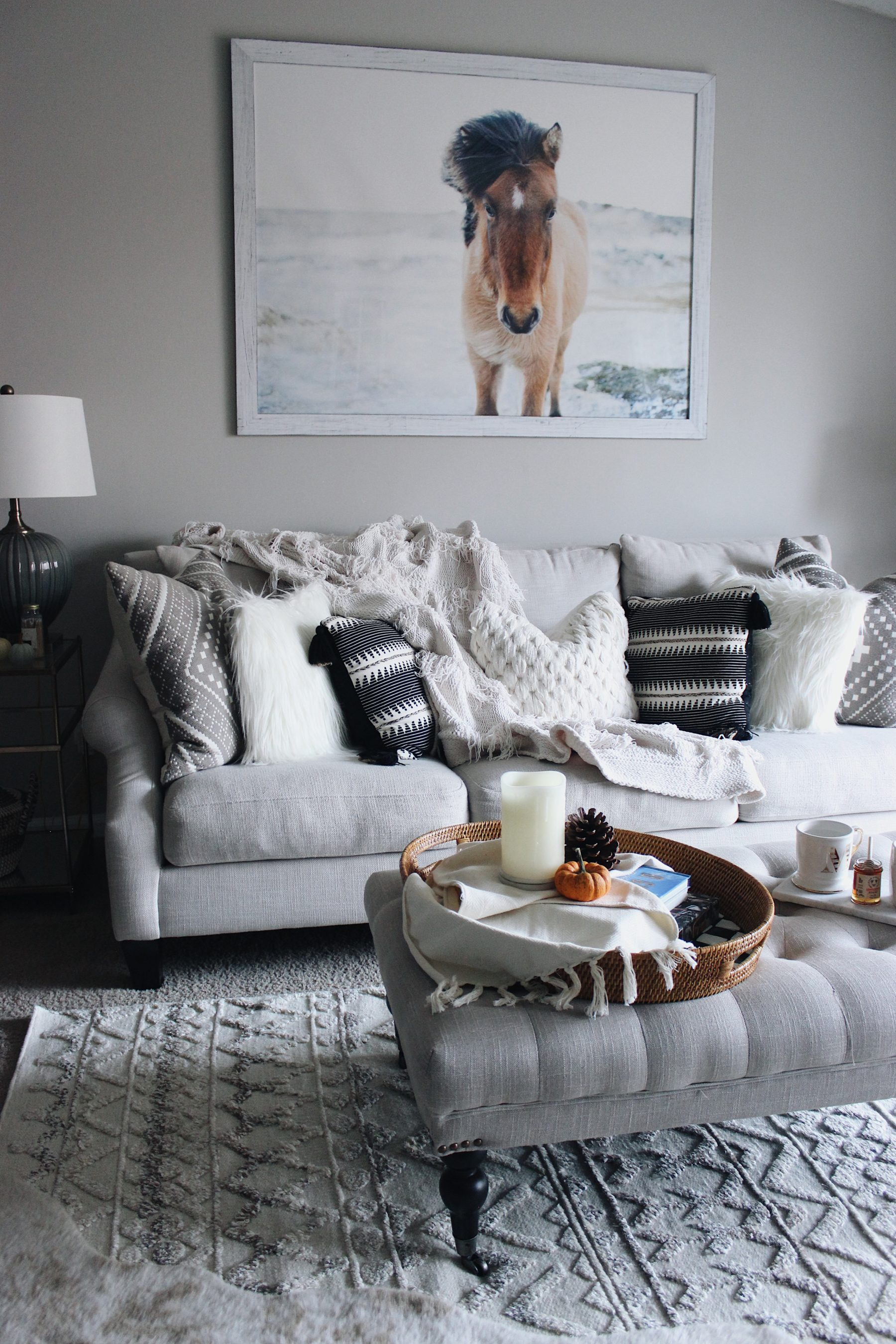 Cozy Couch Neutral Pillows